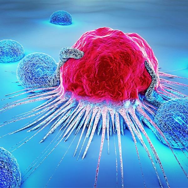 Discover New Therapeutics to Enhance Tumor Immunity